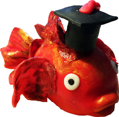 pesce-rosso2