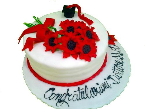 torta-laurea.b